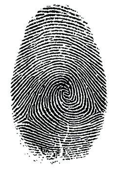 Kids Fingerprint Activity
